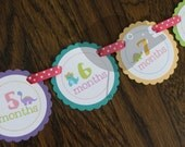 READY to SHIP Darling Dino Collection: Monthly Girl Dinosaur First Birthday Photo Banner. Dino Birthday. Picture Banner. First Year Banner.