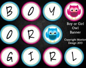 Owl Boy or Girl Banner for Gender Reveal Parties