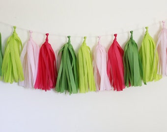 Birthday Party Decorations : Tassel Garland Kit - Pink and Green - Preppy