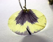 Real Blue and White Pansy - real petal necklace - botanical jewelry - small pendant