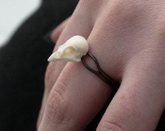 minature sparrow skull ring