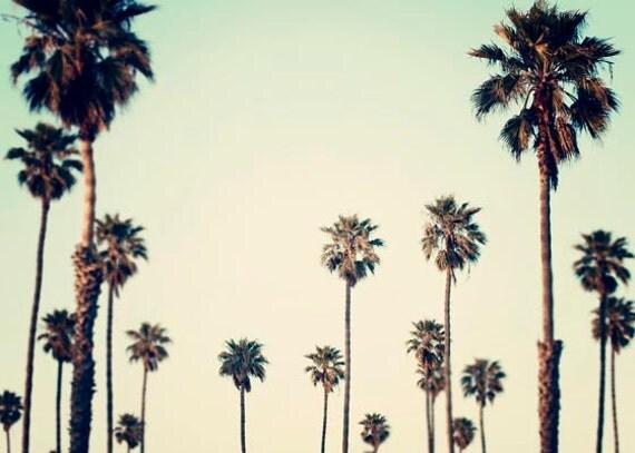 Landscape Photograph, Plam Tree Wall Art, Los Angeles Art, Retro, California, Summertime, Plam Trees, Ombre, Palm Tree Art, 5x7 Photograph