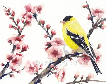 watercolor bird- Goldfinch in Spring Cherry Tree- spring art print
