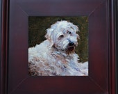 "Made to Order - Commission me - Custom Portrait of your Pet, 6""x6"" framed Oil Painting, small painting of your Cat, Dog, Rabbit etc."