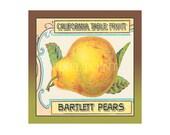 Small Journal - California Bartlett Pears - Fruit Crate Art Print Cover