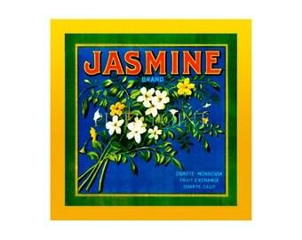 Small Journal - Jasmine Brand - Fruit Crate Art Print Cover