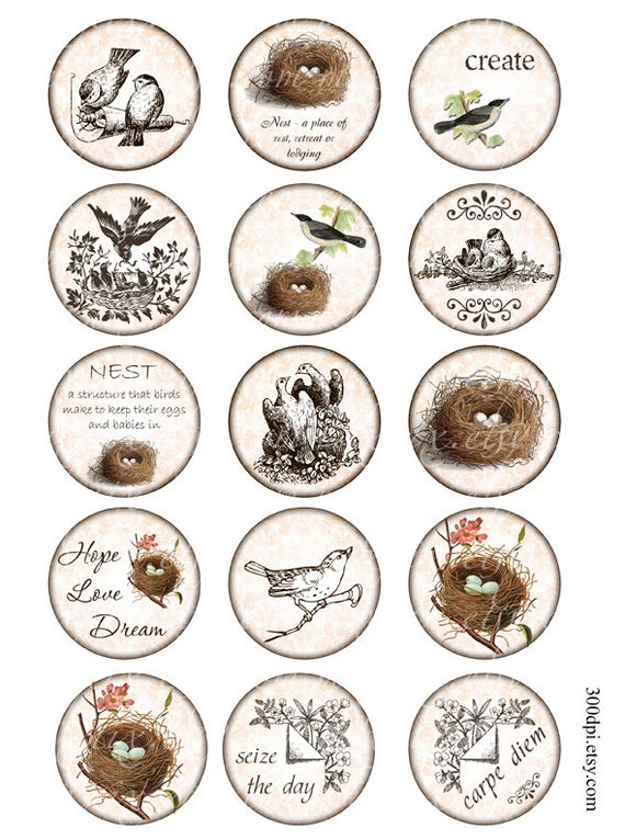 2 inch circles Vintage Printable Tags Background Digital Collage Sheet large images round nest bird Download and Print scrapbooking sticker