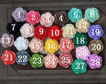 28pcs Beautiful Colorful Rose Flower Resin Cabochon --24mm(CAB-DS-MIXSS)