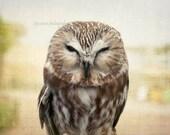 Owl Photography, Owl Print, Owl Photo Print, Woodland Nursery Art, Brown Owl Art, Brown and Green, Owl Wall Art, Forest Animal, Owl Decor