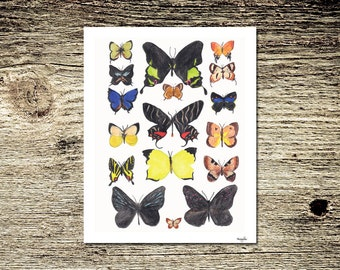 Butterfly Grouping Lifelike Multicolored Watercolor Art Print: Butterfly Kisses I
