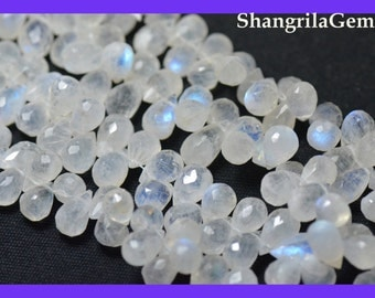 25 11mm - 8mm Rainbow Moonstone briolettes whrb02