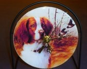 Brittany Spaniel Recycled CD Clock Art