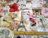 LAST PIECE - 2 yards 15 inches - Sepia Paris Map premium cotton fabric by Timeless Treasures - eiffel tower,cafes,champs elysees, concord,
