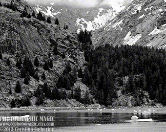 ALASKA LANDSCAPE 3 Black and White - digital high res file - fine art photography - alaskan tracey arm fjord pine trees mountains icebergs