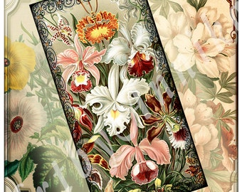 Digital Collage of Beautiful vintage flowers - 30 1x2 Inch JPG images