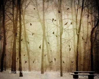 Misty Tree Landscape Photograph Flying Birds Fog Lit Forest Golden Sepia Wall Art 10x8