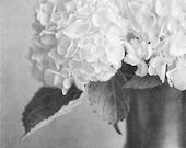 Black and White Photography, Hydrangea Print, Silver, Charcoal, Cream, Elegant Home Decor, Bathroom Decor, Bedroom Decor, Flower Print.