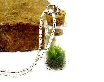 Terrarium Necklace,  Terrarium on a 16 inch Sterling Silver Chain,  Birthday present, Botanical Specimen,Valentine Gift