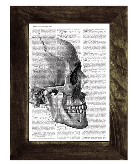 Summer Sale Skull - Human Head Anatomy Study - Dictionary Book Page Print - Anatomy Art on Upcycled Book Page SKA012