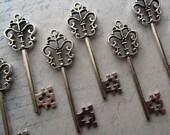Zamora Antique Silver Skeleton Key  - Set of 10