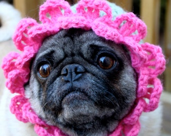 Playful Petals Hat - Dog Hat / Made to Order
