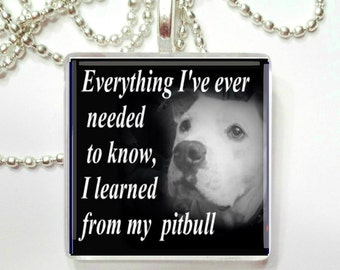 Everything I've ever needed to know, I learned from my Pitbull Glass Tile Pendant