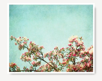 Pink Cherry Blossoms Print, Fine Art Photo, large print, flower photo, aqua blue, pink, art print, pink wall art, for her