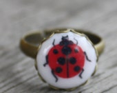 Lady Bug Ring - adjustable antiqued brass band, lady bug jewelry, garden ring, woodland ring, nature ring, brass ring, insect ring, summer