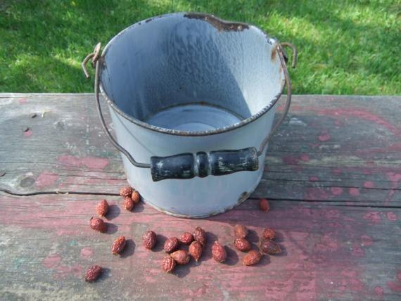 Gray Graniteware Bucket Berry Pail Antique
