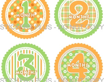 Baby Month Stickers Plus FREE Gift Girl Monthly Milestone Stickers Green Orange Dots Flowers Stripes PRECUT Baby Age Stickers Photo Prop