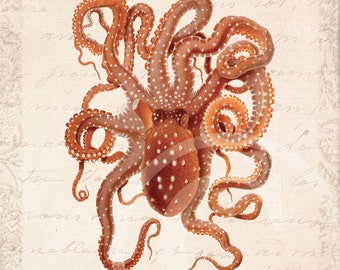 Octopus Collage Art Print - 5 x 7 - Octopus macropus Collage