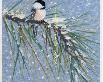 Blue Show Pine Chickadee, Bird 1 - Brushstroke enhanced 8 X 10 inch PRINT