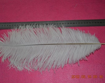 50pcs/lot 14-16 inches ostrich feather for wedding table centerpiece decorations AA quality Many colors in stock