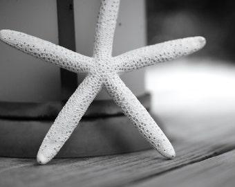 Black and White Nautical Photography Prints | Starfish + Nautical Lantern | Nautical Wall Decor Prints | Large Beach Theme Coastal Decor Art