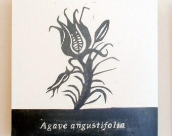 Agave angustifolia, Relief Print on Wood Panel, encaustic, botanical, hand pulled print, original art
