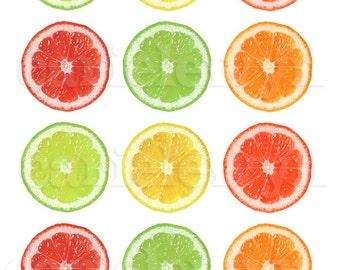 Citrus Bottlecap Images / Slices of Lemon, Lime, Grapefruit, Orange / Digital Collage Printable 1-Inch Circles