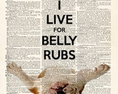 KEEP CALM English Bulldog - I LiVe FoR BeLLY RuBS - Dictionary Print - illustration collage upcycled dictionary page book art