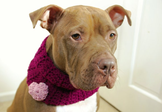 Dog Cowl Purple with Pink Heart Crochet