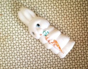 Rabbit with carrot, his name is Ivan. Use him for mixed media art, photography projects, or company.