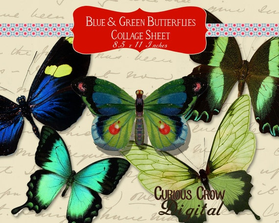 Blue and Green Butterflies Digital Collage Sheet - INSTANT Printable Download