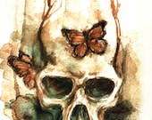 watercolor skull and butterfly - 18x24cm