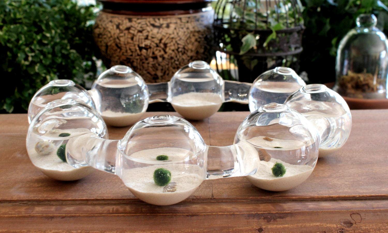 Marimo Aquarium Centipede Tabletop Centerpiece 8 Glass Vases
