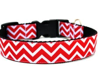 "Striped Dog Collar 1"" Chevron Dog Collar"