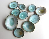 Turquoise Shells 15 pcs - Beach Decor - Limpet Shells