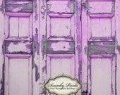 NEW ITEM 6ft x 6ft Vinyl Photography Backdrop  /  Purple Peeling Door / Grunge Wall