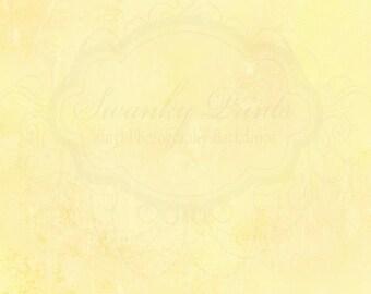 5ft x 5ft Vinyl Photography Backdrop / Yellow Texture