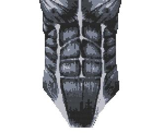Contemporary Cross Stitch Kit 'Bicep Muscles' Human Body Needelecraft CrossSticth Kit