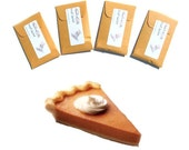 Pumpkin Pie Spice Hostess Gifts Thanksgiving Table DIY Place Cards Favors Rustic Seed Packet Scented Sachets Autumn Wedding Fall Decorations