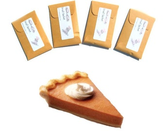Pumpkin Spice Hostess Gifts Thanksgiving Table DIY Place Cards Pie Favors Rustic Seed Packet Scented Sachets Autumn Wedding Fall Decorations