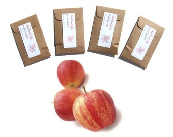 Sachets Scented Macintosh Apple Rustic Baby Shower Favors Seed Packet Kraft or Pick Color Personalized Teachers Gift Wedding